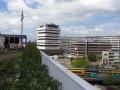 Verborgen tuinen- Dakakker milieucentrum Rotterdam