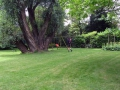 Verborgen tuinen- Tuin Waelheul Rotterdam